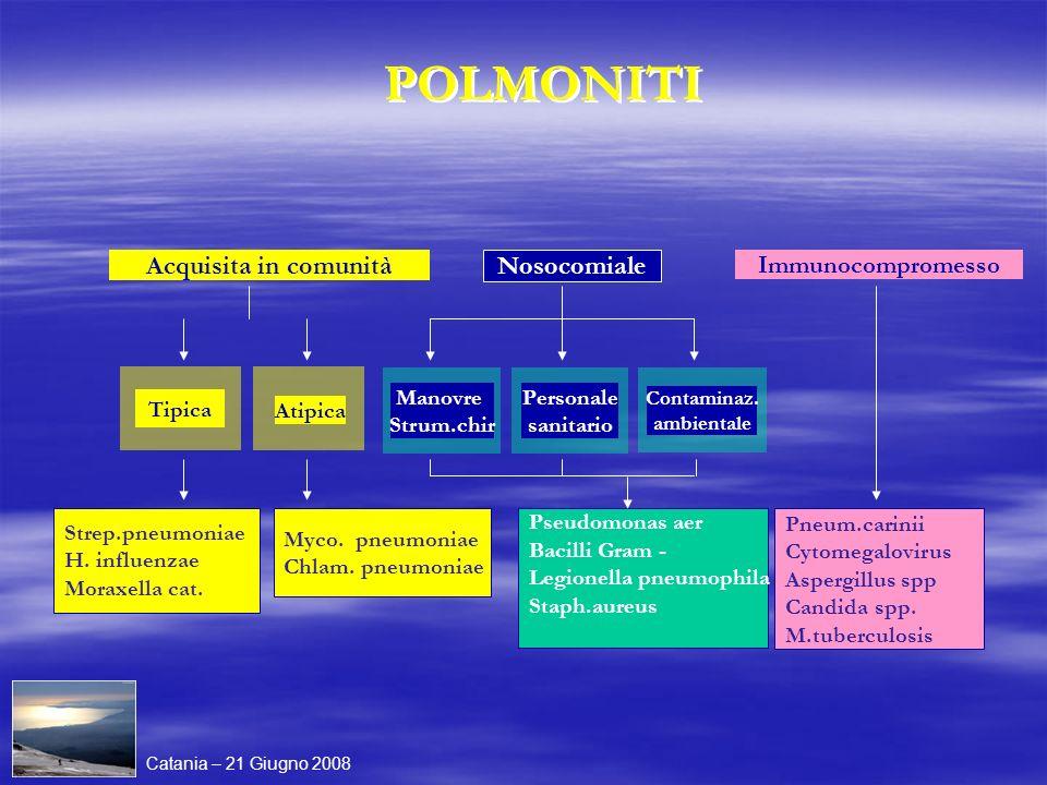 Atipica Acquisita in comunità Personale sanitario Contaminaz. ambientale Nosocomiale Immunocompromesso Strep.pneumoniae H. influenzae Moraxella cat. M
