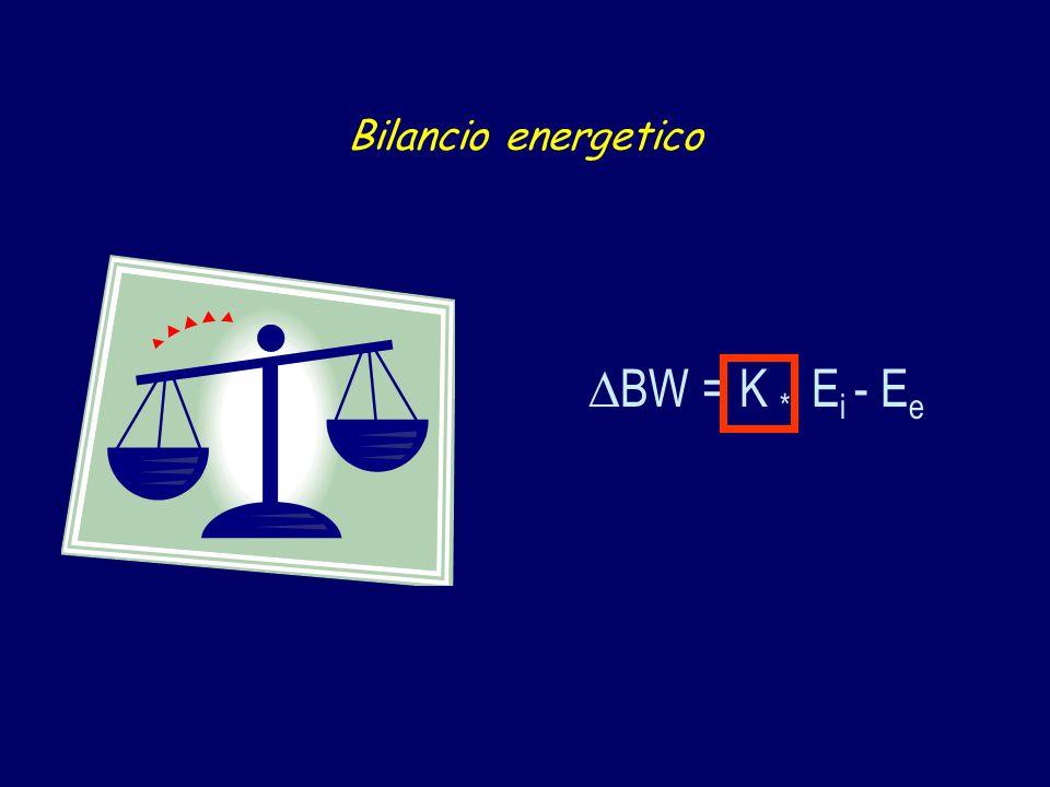 Bilancio energetico BW = K * E i - E e