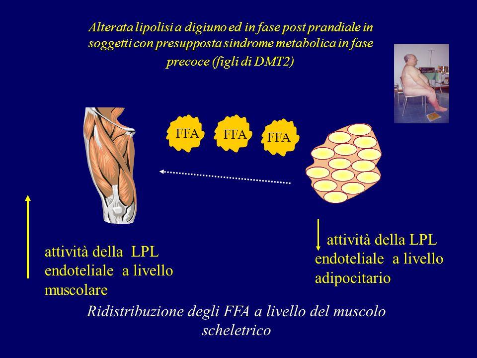 attività della LPL endoteliale a livello adipocitario attività della LPL endoteliale a livello muscolare FFA Alterata lipolisi a digiuno ed in fase post prandiale in soggetti con presupposta sindrome metabolica in fase precoce (figli di DMT2) Ridistribuzione degli FFA a livello del muscolo scheletrico