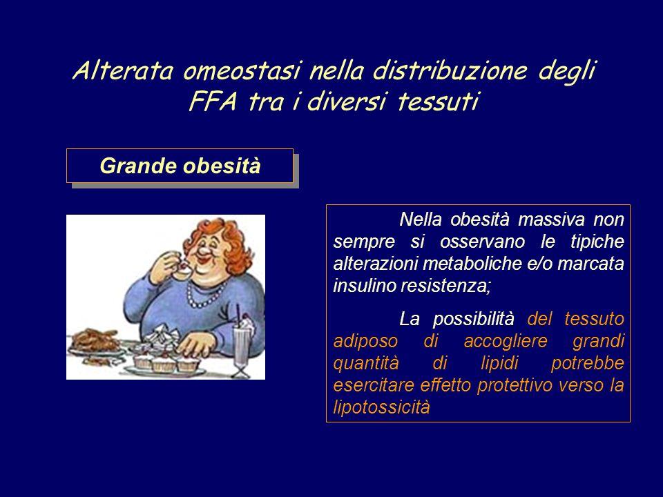 Alterata omeostasi nella distribuzione degli FFA tra i diversi tessuti Nella obesità massiva non sempre si osservano le tipiche alterazioni metaboliche e/o marcata insulino resistenza; La possibilità del tessuto adiposo di accogliere grandi quantità di lipidi potrebbe esercitare effetto protettivo verso la lipotossicità Grande obesità