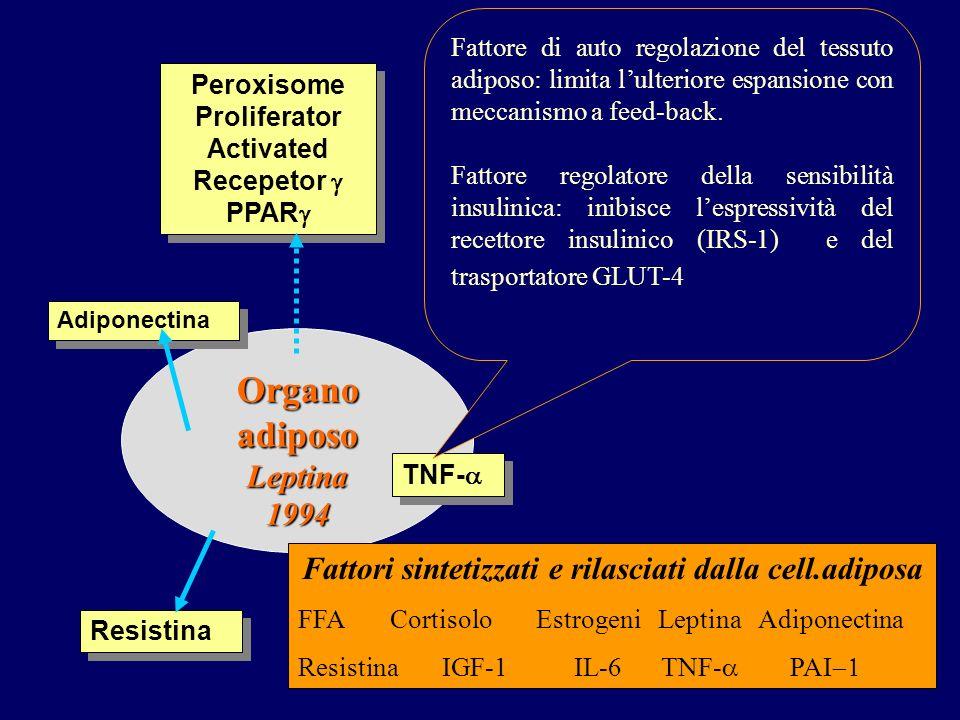 Organo adiposo Leptina1994 TNF- Peroxisome Proliferator Activated Recepetor PPAR Fattore di auto regolazione del tessuto adiposo: limita lulteriore espansione con meccanismo a feed-back.
