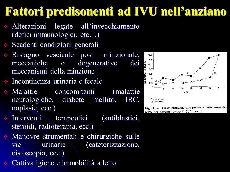 Fattori predisonenti ad IVU nellanziano Alterazioni legate allinvecchiamento (defici immunologici, etc…) Alterazioni legate allinvecchiamento (defici