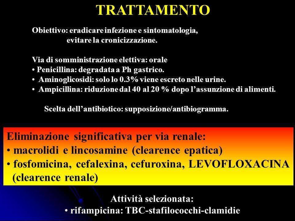TRATTAMENTO Obiettivo: eradicare infezione e sintomatologia, evitare la cronicizzazione. Via di somministrazione elettiva: orale Penicillina: degradat