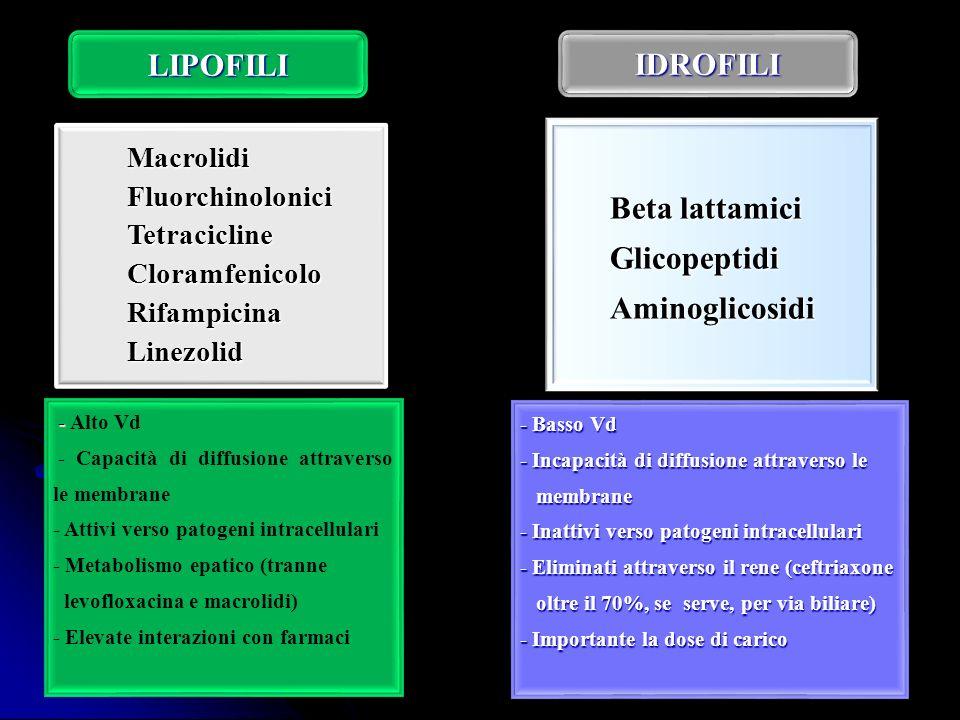 MacrolidiFluorchinoloniciTetraciclineCloramfenicoloRifampicinaLinezolid Beta lattamici GlicopeptidiAminoglicosidi - - Alto Vd - Capacità di diffusione