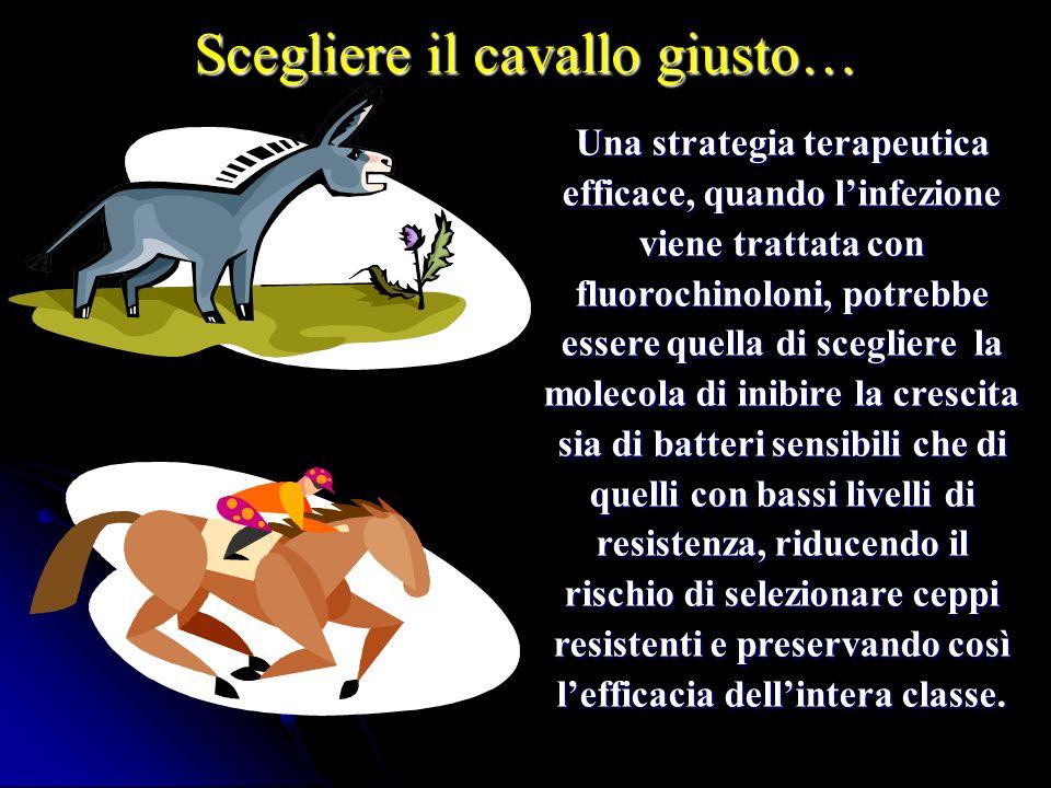 Scegliere il cavallo giusto… Una strategia terapeutica efficace, quando linfezione viene trattata con fluorochinoloni, potrebbe essere quella di scegl