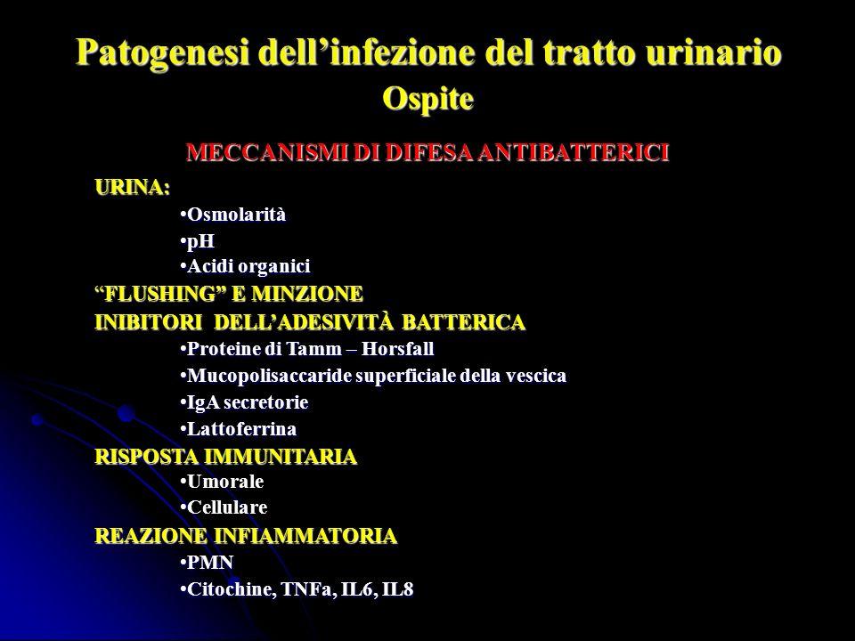 Patogenesi dellinfezione del tratto urinario Ospite FATTORI FAVORENTI LA COLONIZZAZIONE FATTORI ANATOMICI E FUNZIONALI FATTORI ANATOMICI E FUNZIONALI PATOLOGIE : diabete mellito, malattie neurologiche PATOLOGIE : diabete mellito, malattie neurologiche COLONIZZAZIONE: COLONIZZAZIONE: - epitelio vaginale - epitelio vaginale - area periuretrale - area periuretrale - colon