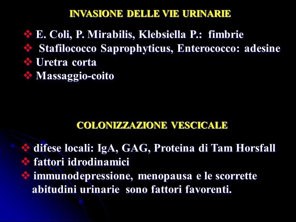 INVASIONE DELLE VIE URINARIE E. Coli, P. Mirabilis, Klebsiella P.: fimbrie E. Coli, P. Mirabilis, Klebsiella P.: fimbrie Stafilococco Saprophyticus, E