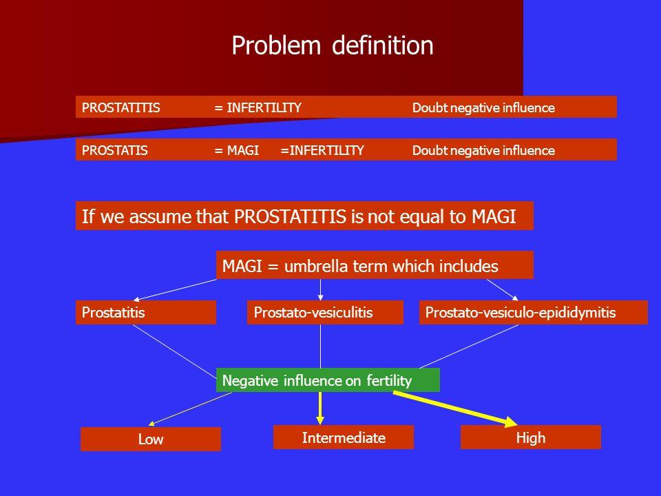 Problem definition Prostato-vesiculo-epididymitis PROSTATITIS = INFERTILITYDoubt negative influence PROSTATIS = MAGI=INFERTILITYDoubt negative influen