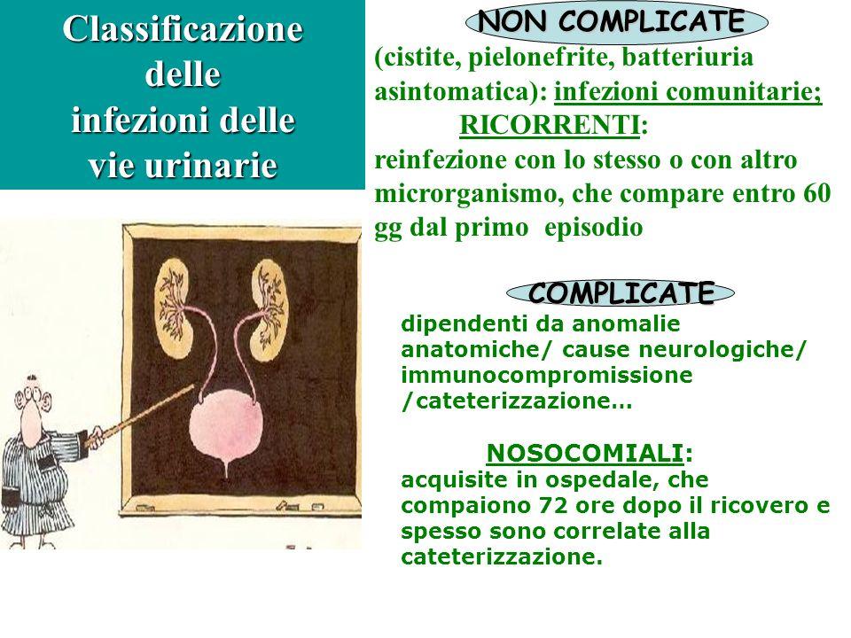 NON COMPLICATE (cistite, pielonefrite, batteriuria asintomatica): infezioni comunitarie; RICORRENTI: reinfezione con lo stesso o con altro microrganis