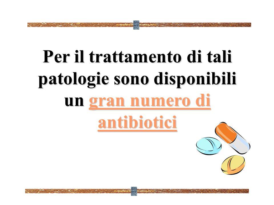 Per il trattamento di tali patologie sono disponibili un gran numero di antibiotici