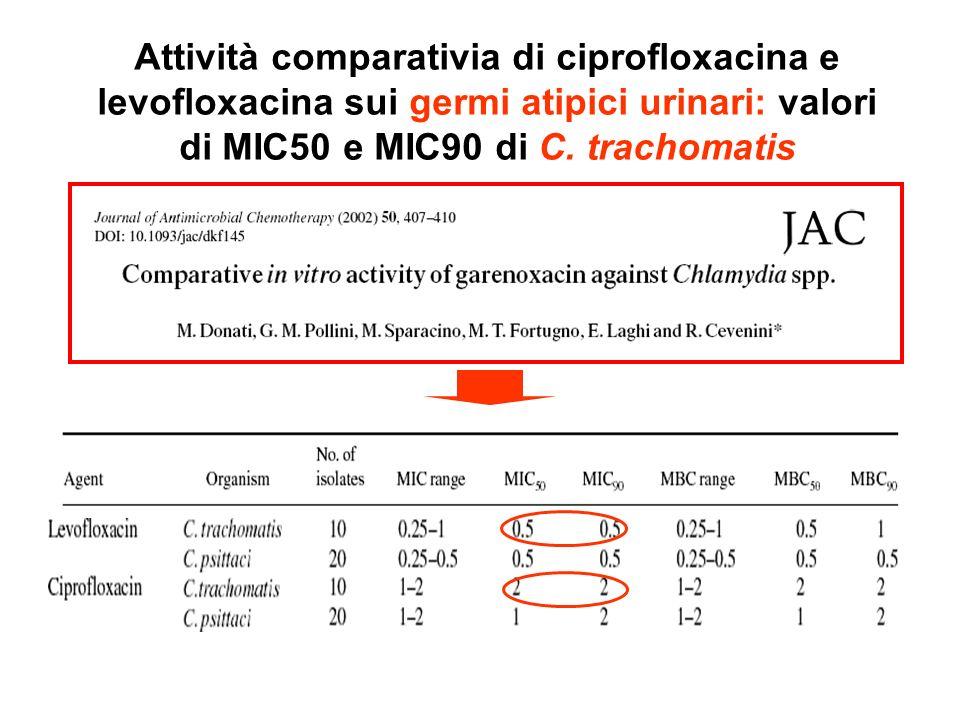 Attività comparativia di ciprofloxacina e levofloxacina sui germi atipici urinari: valori di MIC50 e MIC90 di C. trachomatis