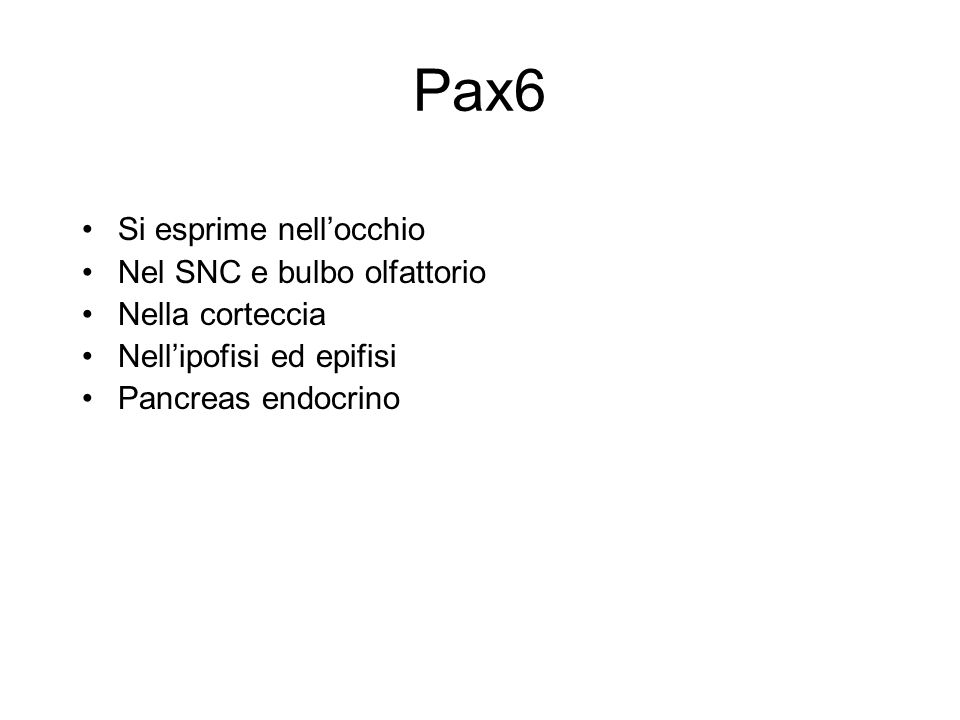 Pax6 Si esprime nellocchio Nel SNC e bulbo olfattorio Nella corteccia Nellipofisi ed epifisi Pancreas endocrino