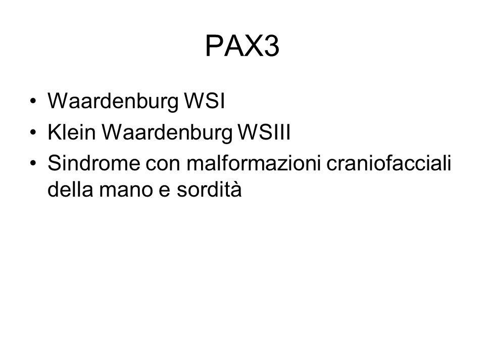 PAX3 Waardenburg WSI Klein Waardenburg WSIII Sindrome con malformazioni craniofacciali della mano e sordità