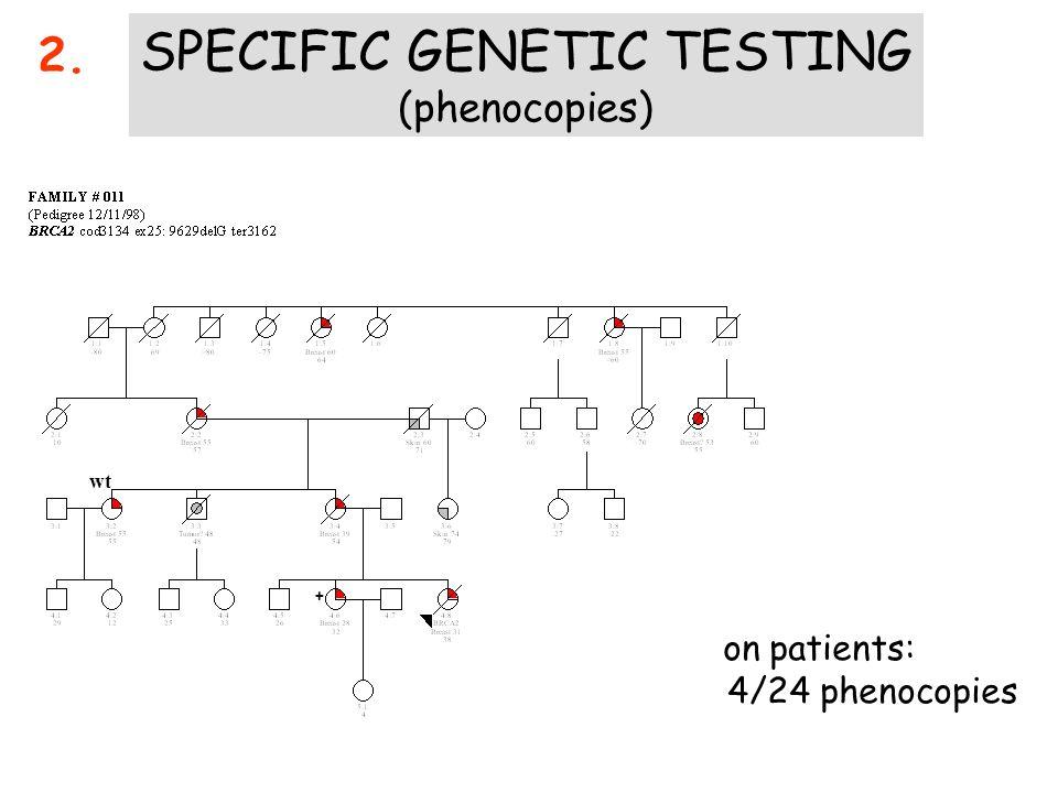 e corretto lo stesso approccio chirurgico nel cancro della mammella standard (sporadico) ereditario ? Family # 432 Pedigree 29/6/04 pT1b, No, G2, R>,