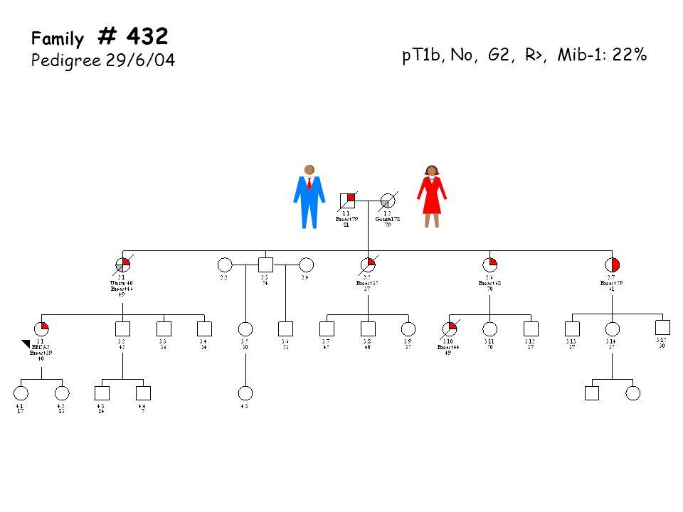 Family # 432 Pedigree 29/6/04 pT1b, No, G2, R>, Mib-1: 22%