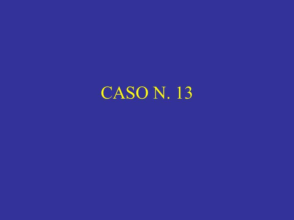 CASO N. 13