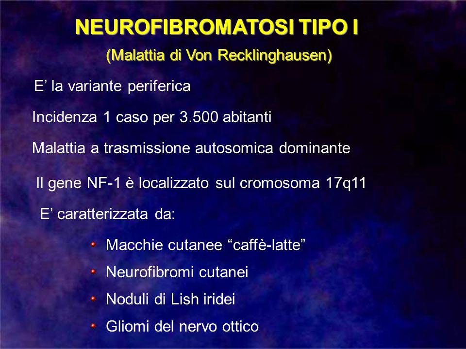 NEUROFIBROMATOSI TIPO I (Malattia di Von Recklinghausen) Incidenza 1 caso per 3.500 abitanti Malattia a trasmissione autosomica dominante Il gene NF-1