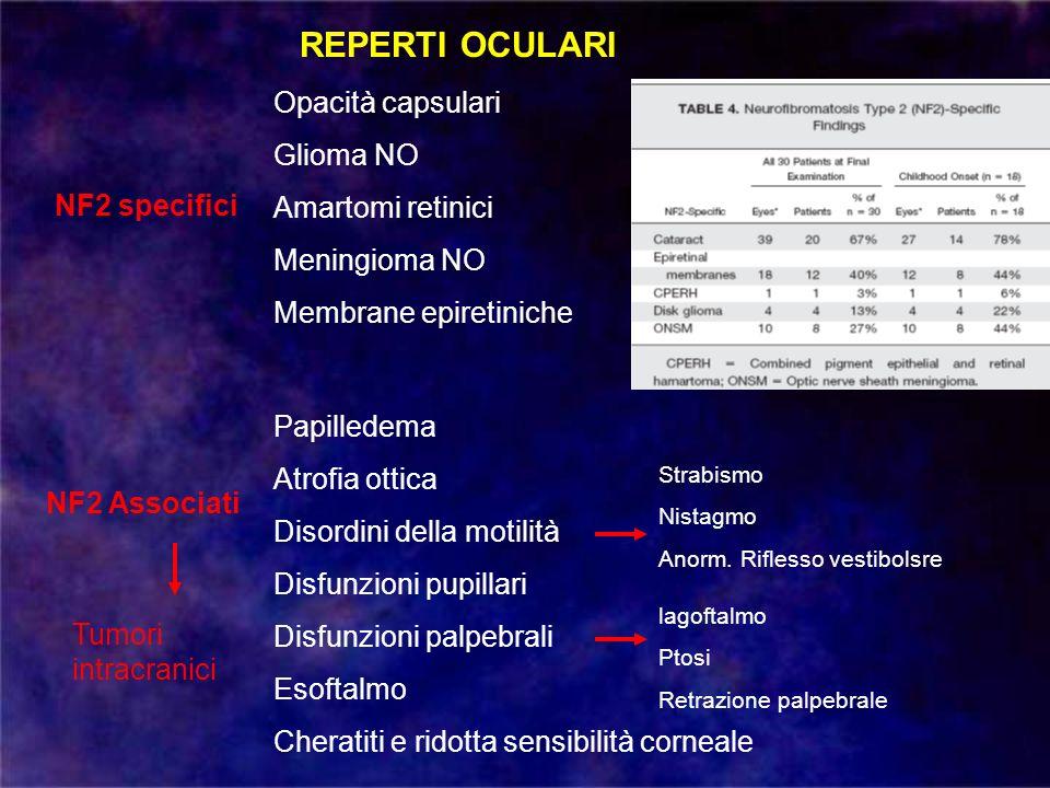 REPERTI OCULARI NF2 specifici NF2 Associati Opacità capsulari Glioma NO Amartomi retinici Meningioma NO Membrane epiretiniche Papilledema Atrofia otti