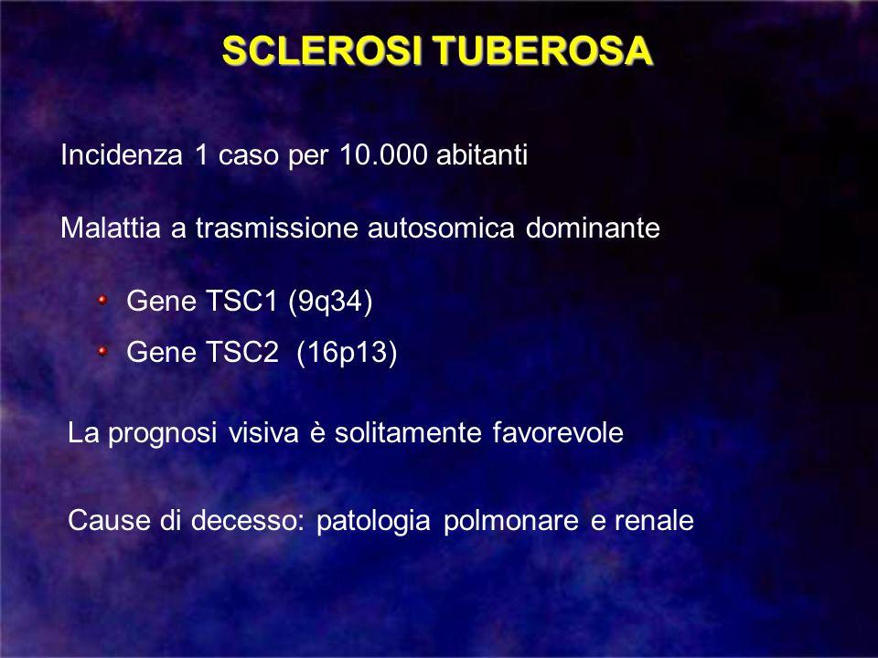 Incidenza 1 caso per 10.000 abitanti SCLEROSI TUBEROSA Malattia a trasmissione autosomica dominante Gene TSC1 (9q34) Gene TSC2 (16p13) La prognosi vis