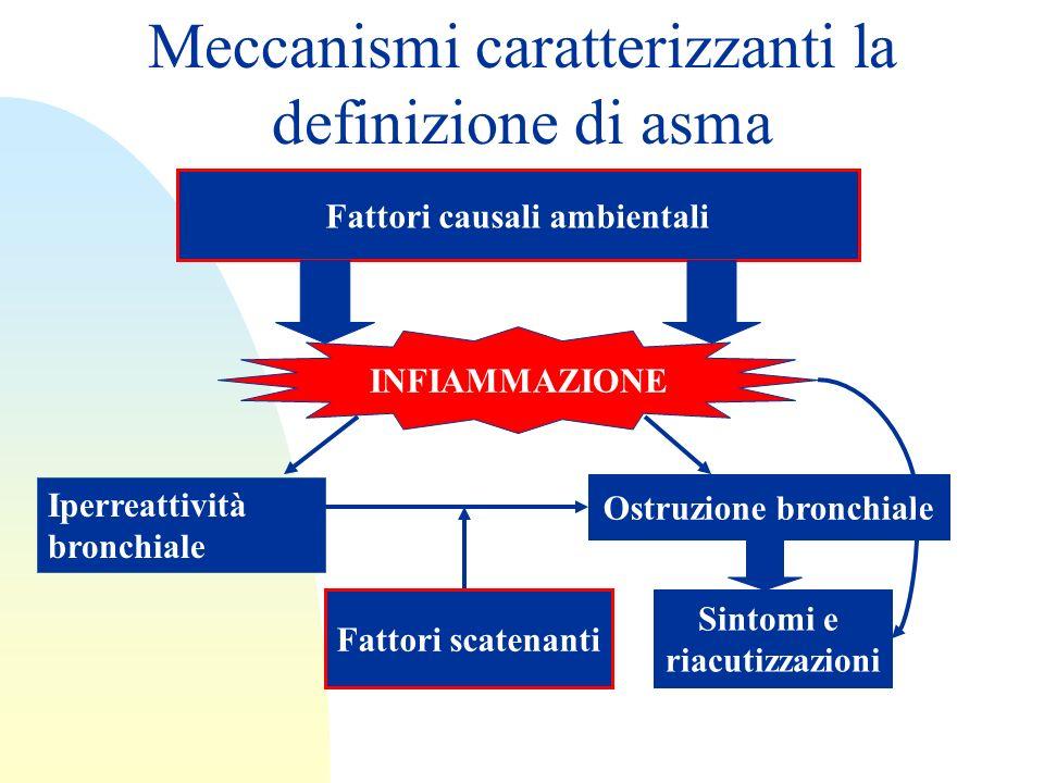Meccanismi caratterizzanti la definizione di asma Fattori causali ambientali INFIAMMAZIONE Iperreattività bronchiale Ostruzione bronchiale Fattori sca