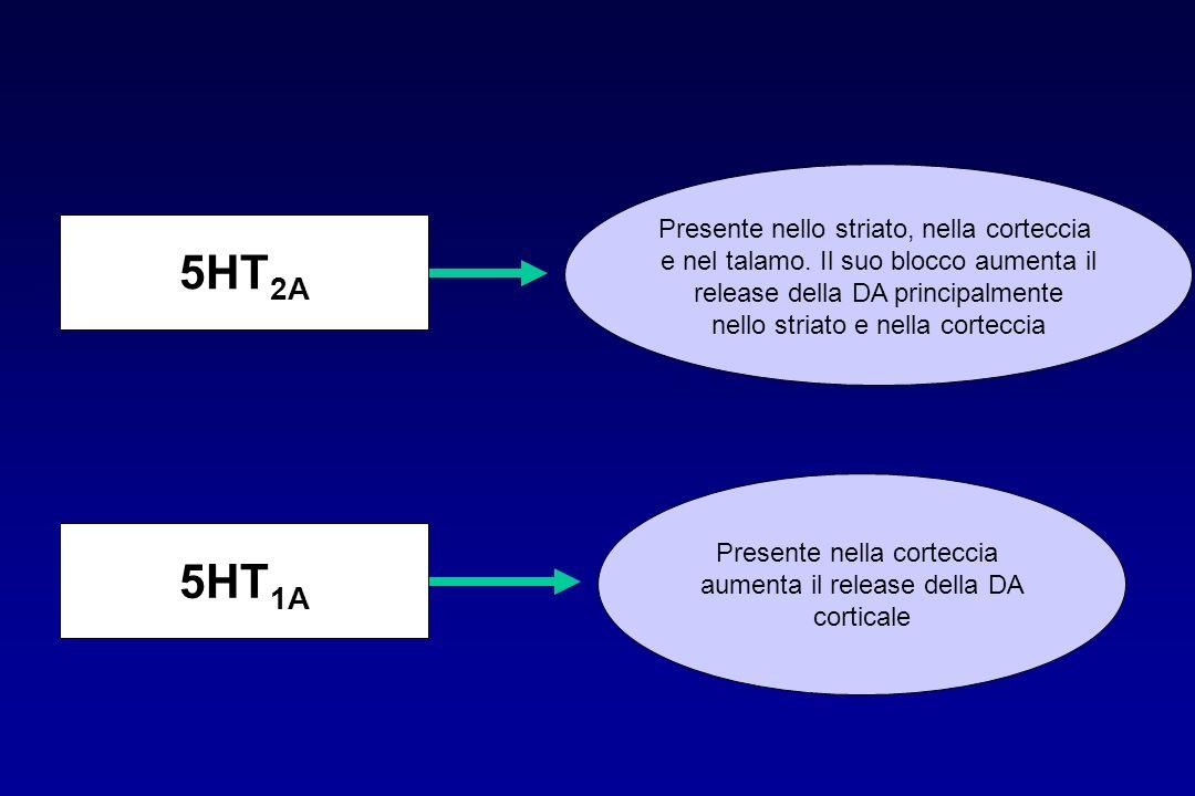 5HT 2A 5HT 1A Presente nello striato, nella corteccia e nel talamo. Il suo blocco aumenta il release della DA principalmente nello striato e nella cor