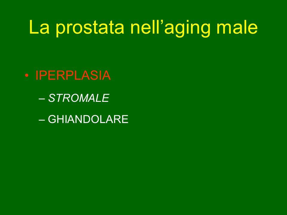 La prostata nellaging male IPERPLASIA –STROMALE –GHIANDOLARE