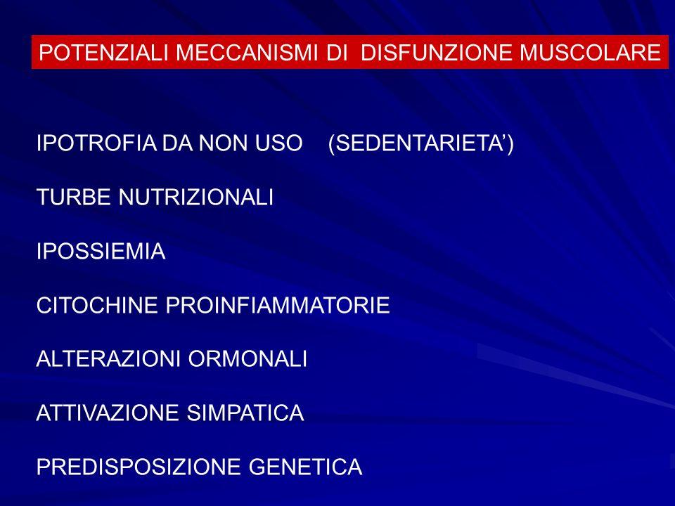 POTENZIALI MECCANISMI DI DISFUNZIONE MUSCOLARE IPOTROFIA DA NON USO (SEDENTARIETA) TURBE NUTRIZIONALI IPOSSIEMIA CITOCHINE PROINFIAMMATORIE ALTERAZION