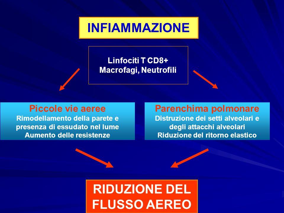 La BPCO è una malattia con significativi effetti extra polmonari che possono contribuire alla gravità del quadro clinico del paziente Linee Guida Gold Ed.