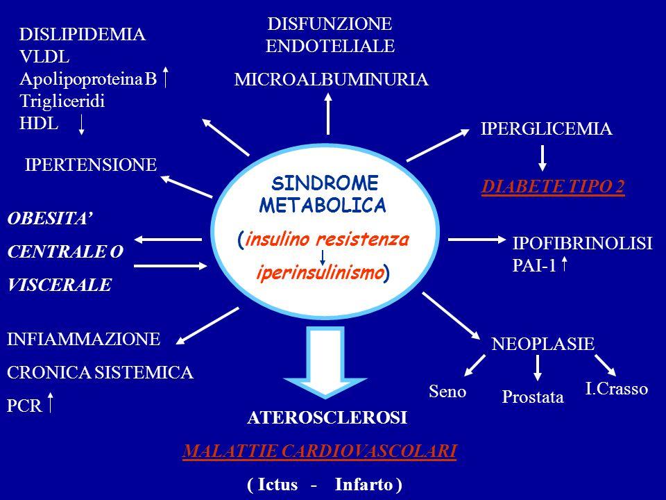 SINDROME METABOLICA (insulino resistenza iperinsulinismo) IPERTENSIONE DISLIPIDEMIA VLDL Apolipoproteina B Trigliceridi HDL DISFUNZIONE ENDOTELIALE MI