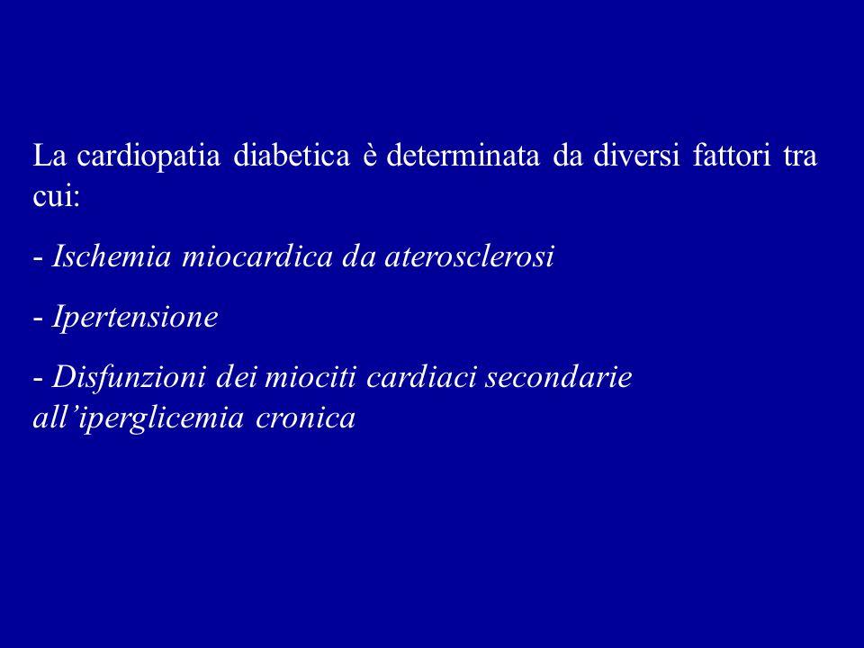 La cardiopatia diabetica è determinata da diversi fattori tra cui: - Ischemia miocardica da aterosclerosi - Ipertensione - Disfunzioni dei miociti car