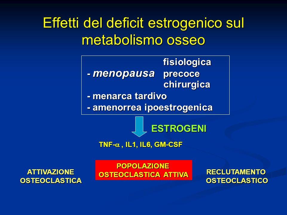 Precursori osteoclasti osteoclasto maturo Differenziazione M-CSF RANK RANKL inibizione OPG RANKL Cellule stromali/osteoblasti RANKL RANK OPG decoy receptor DIFFERENZIAZIONE INIBIZIONE Estrogeni e Regolazione della Osteoclastogenesi (Da Nuti 2005 modif) + Estrogeni