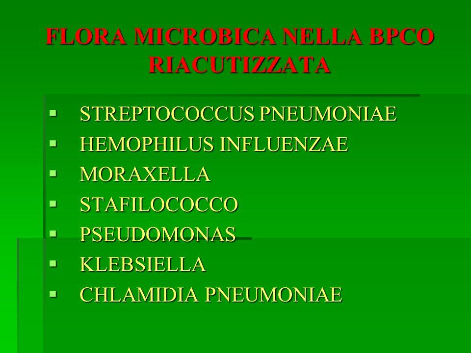 FLORA MICROBICA NELLA BPCO RIACUTIZZATA STREPTOCOCCUS PNEUMONIAE STREPTOCOCCUS PNEUMONIAE HEMOPHILUS INFLUENZAE HEMOPHILUS INFLUENZAE MORAXELLA MORAXE
