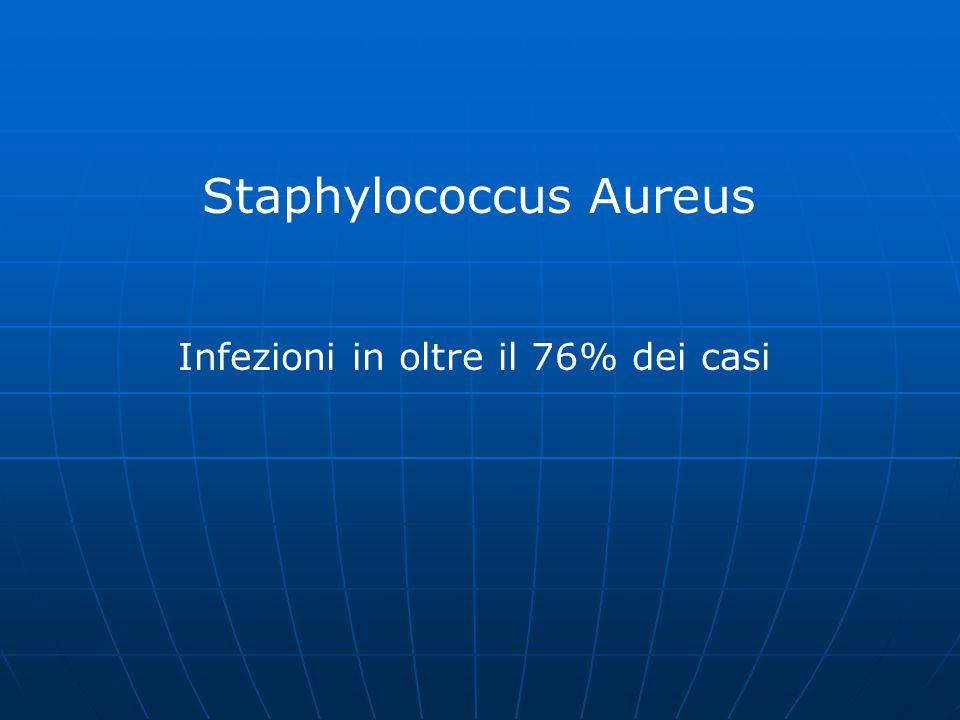 Staphylococcus Aureus Infezioni in oltre il 76% dei casi