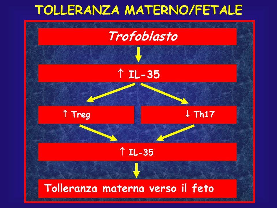 IL-35 Treg Th17 IL-35 Tolleranza materna verso il feto Trofoblasto TOLLERANZA MATERNO/FETALE
