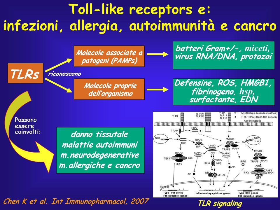 Toll-like receptors e: infezioni, allergia, autoimmunità e cancro TLRs Molecole associate a patogeni (PAMPs) Molecole proprie dellorganismo batteri Gr