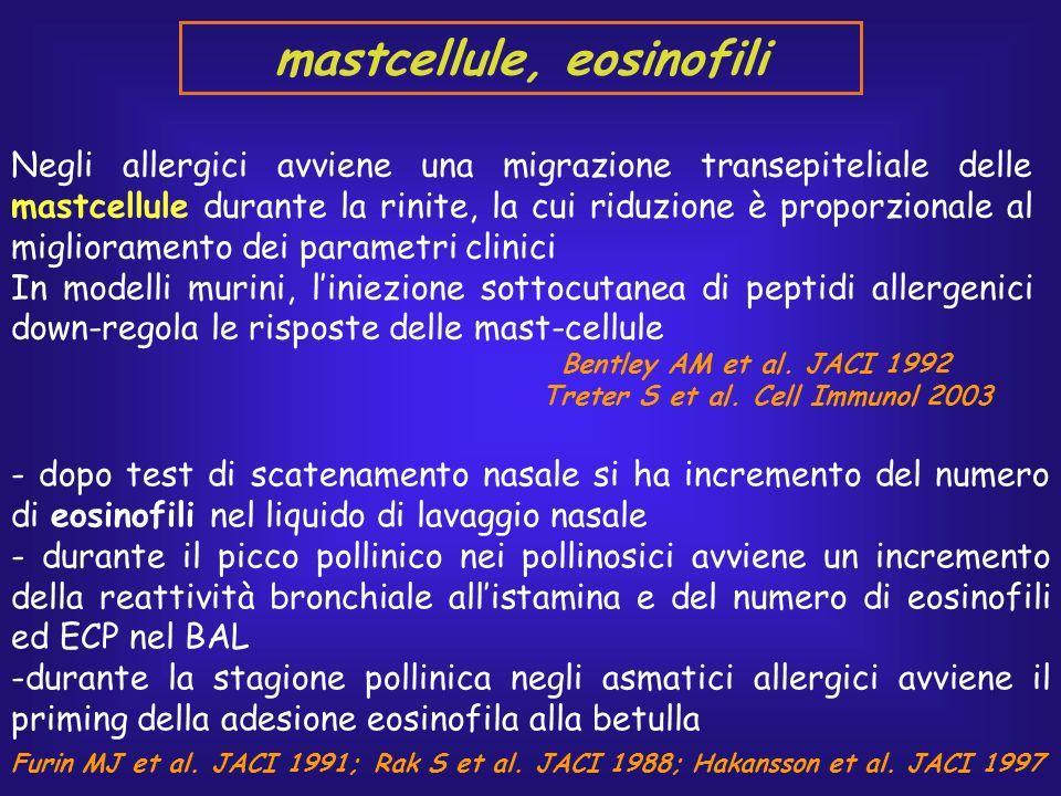 Negli allergici avviene una migrazione transepiteliale delle mastcellule durante la rinite, la cui riduzione è proporzionale al miglioramento dei para