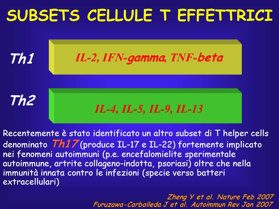 SUBSETS CELLULE T EFFETTRICI Th1 Th2 IL-2, IFN- gamma, TNF- beta IL-4, IL-5, IL-9, IL-13 Recentemente è stato identificato un altro subset di T helper