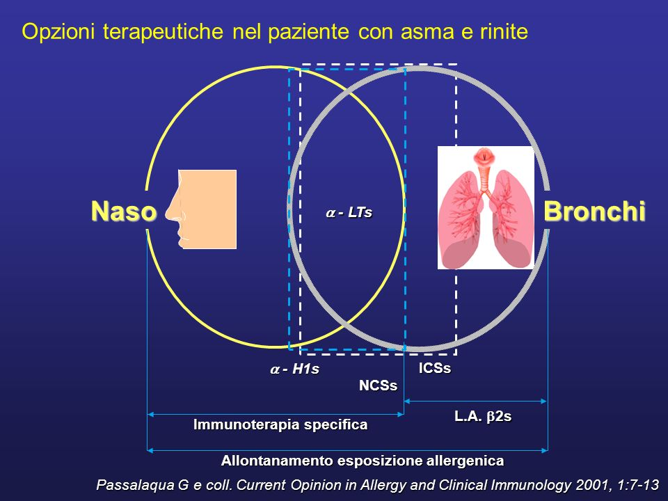 Passalaqua G e coll. Current Opinion in Allergy and Clinical Immunology 2001, 1:7-13 NasoBronchi - LTs - LTs ICSsNCSs - H1s - H1s L.A. 2s Allontanamen