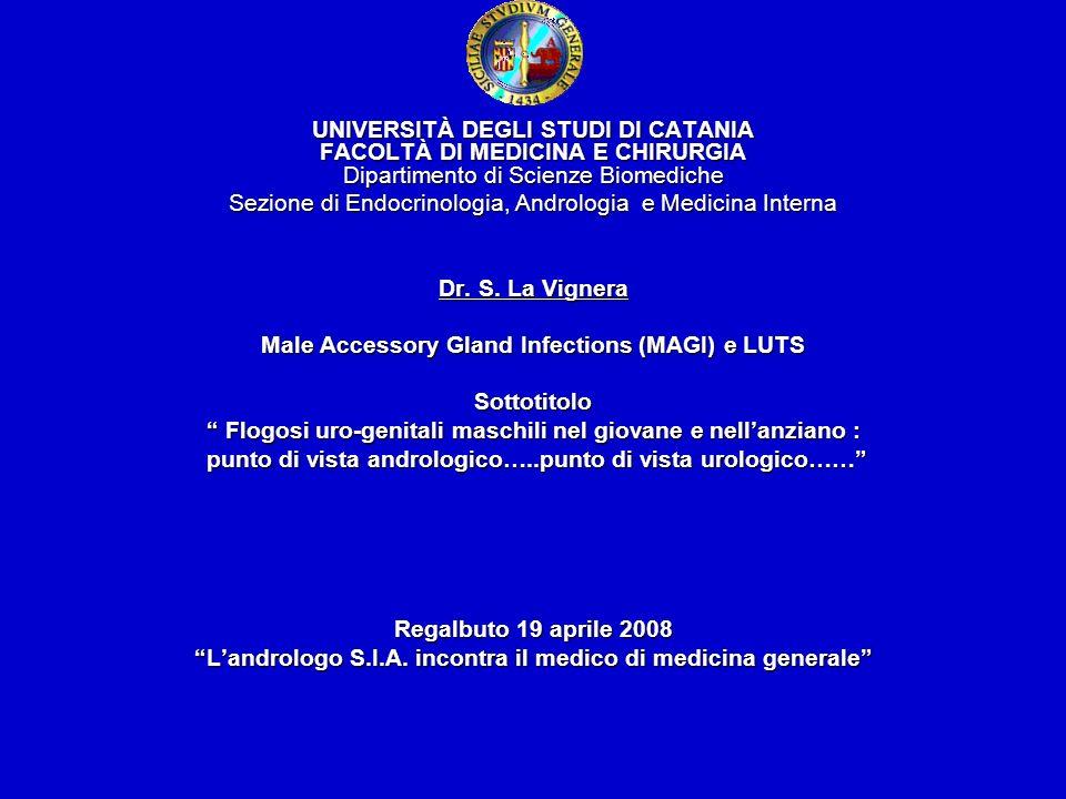 Infezioni uro-genitali maschili : definizione Esistono almeno 2 definizioni convenzionali delle infezioni del tratto urogenitale maschile, risultato di studi paralleli di ricerca di due Task Force internazionali Esistono almeno 2 definizioni convenzionali delle infezioni del tratto urogenitale maschile, risultato di studi paralleli di ricerca di due Task Force internazionali Definizione di MAGI (WHO, 1993) Definizione di MAGI (WHO, 1993) Classificazione delle prostatiti (NIDDK/NIH 1995) Classificazione delle prostatiti (NIDDK/NIH 1995)