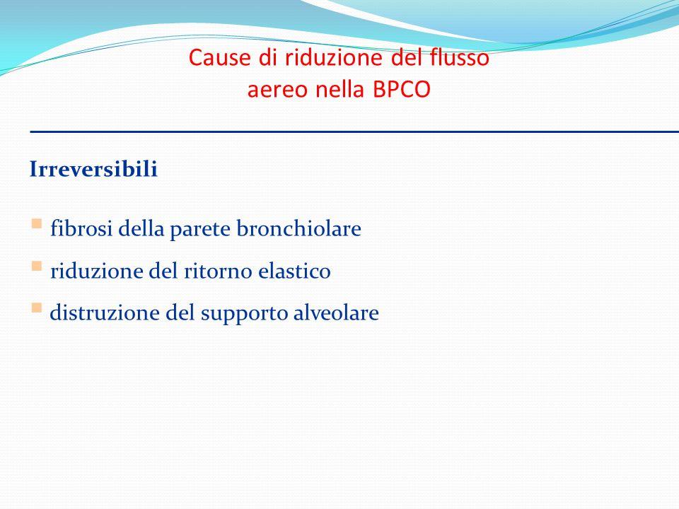 Irreversibili fibrosi della parete bronchiolare riduzione del ritorno elastico distruzione del supporto alveolare Cause di riduzione del flusso aereo