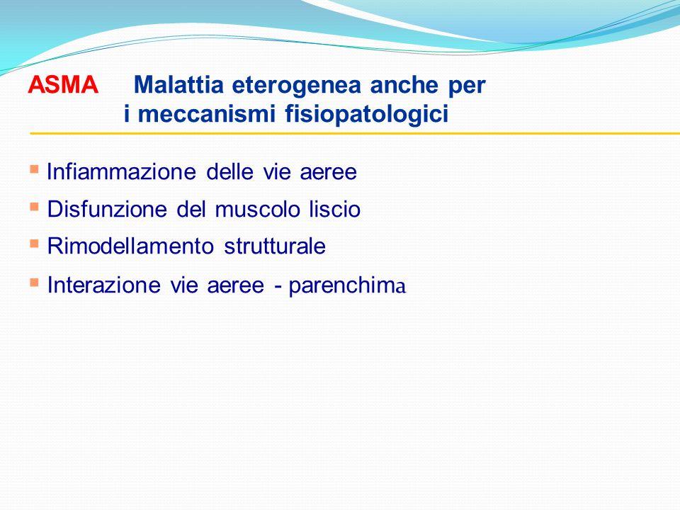 ASMA Malattia eterogenea anche per i meccanismi fisiopatologici Infiammazione delle vie aeree Disfunzione del muscolo liscio Rimodellamento struttural