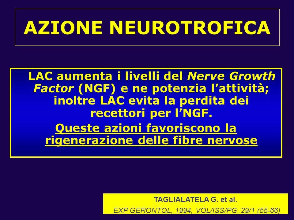 AZIONE NEUROTROFICA LAC aumenta i livelli del Nerve Growth Factor (NGF) e ne potenzia lattività; inoltre LAC evita la perdita dei recettori per lNGF.