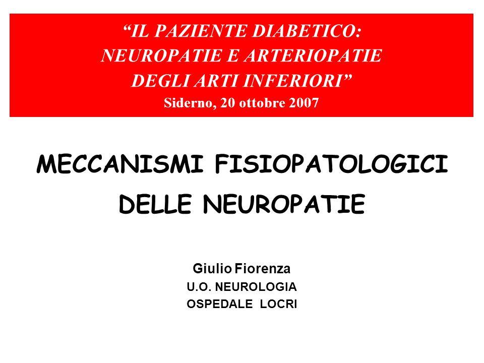 MECCANISMI FISIOPATOLOGICI DELLE NEUROPATIE Giulio Fiorenza U.O. NEUROLOGIA OSPEDALE LOCRI IL PAZIENTE DIABETICO: NEUROPATIE E ARTERIOPATIE DEGLI ARTI