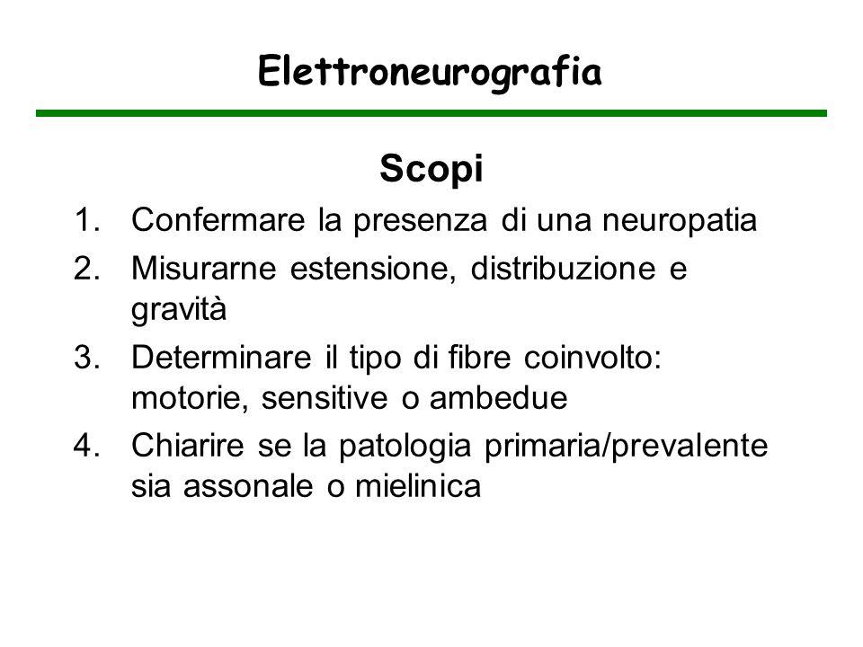 Elettroneurografia Scopi 1.Confermare la presenza di una neuropatia 2.Misurarne estensione, distribuzione e gravità 3.Determinare il tipo di fibre coi
