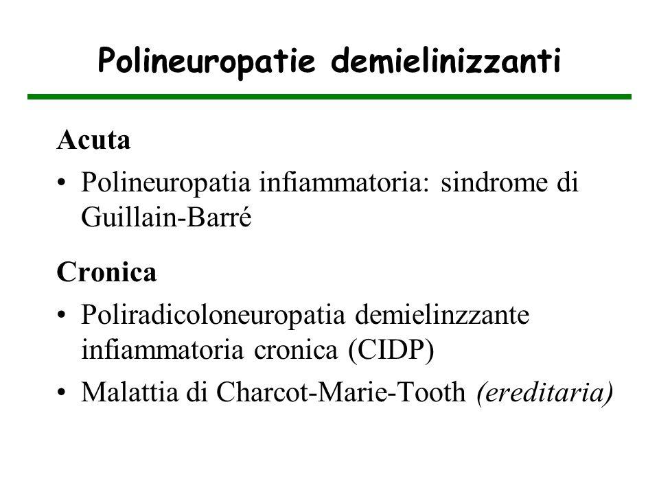 Polineuropatie demielinizzanti Acuta Polineuropatia infiammatoria: sindrome di Guillain-Barré Cronica Poliradicoloneuropatia demielinzzante infiammato