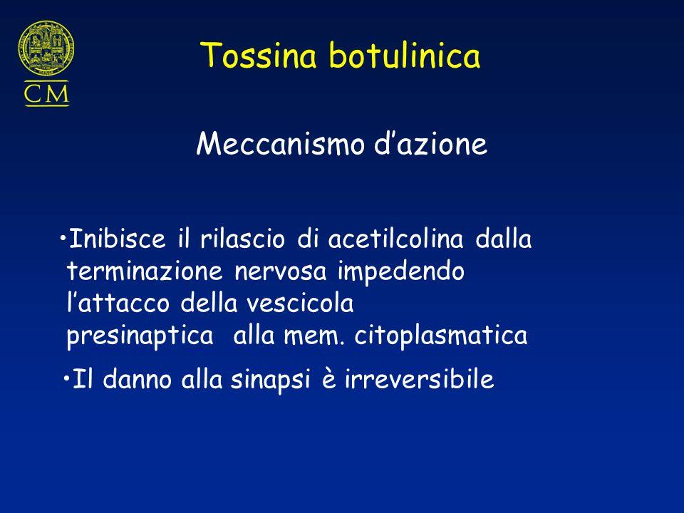 Tossina botulinica Meccanismo dazione Inibisce il rilascio di acetilcolina dalla terminazione nervosa impedendo lattacco della vescicola presinaptica