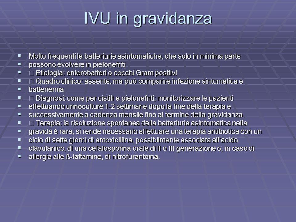 IVU in gravidanza Molto frequenti le batteriurie asintomatiche, che solo in minima parte Molto frequenti le batteriurie asintomatiche, che solo in min