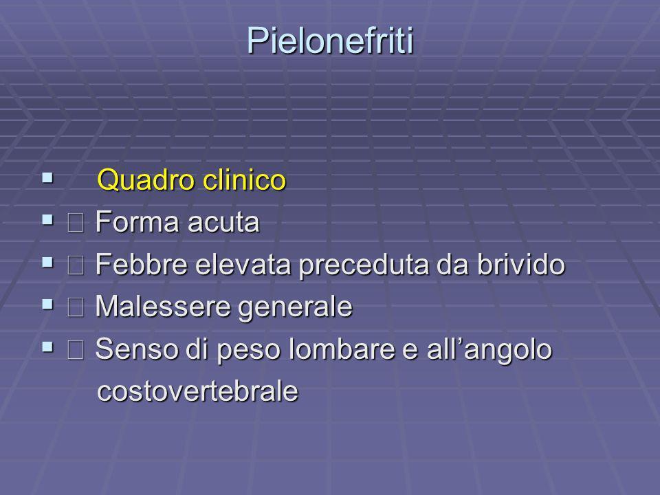 Pielonefriti Quadro clinico Quadro clinico Forma acuta Forma acuta Febbre elevata preceduta da brivido Febbre elevata preceduta da brivido Malessere g