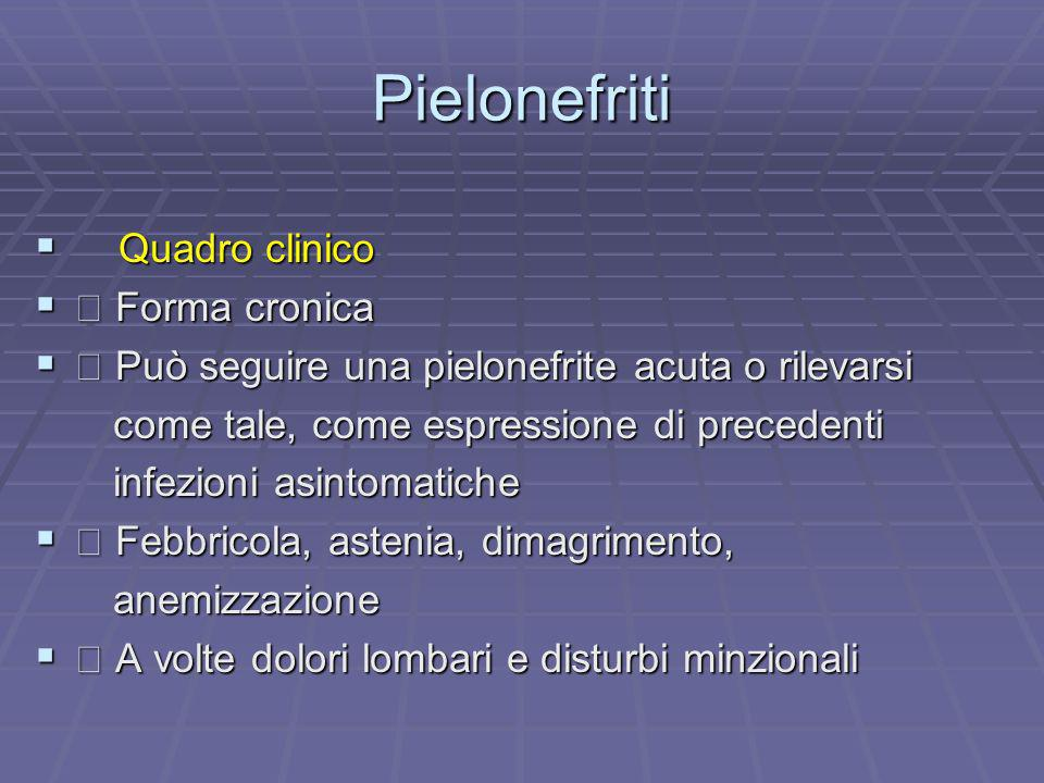 Pielonefriti Quadro clinico Quadro clinico Forma cronica Forma cronica Può seguire una pielonefrite acuta o rilevarsi Può seguire una pielonefrite acu