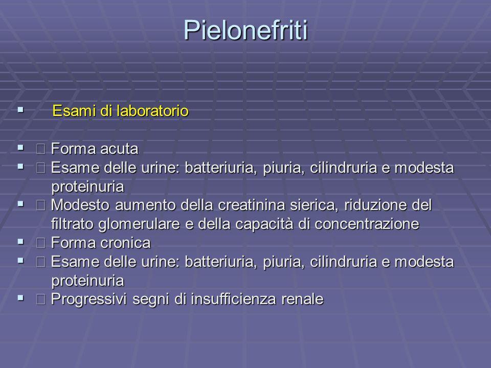 Pielonefriti Esami di laboratorio Esami di laboratorio Forma acuta Forma acuta Esame delle urine: batteriuria, piuria, cilindruria e modesta Esame del